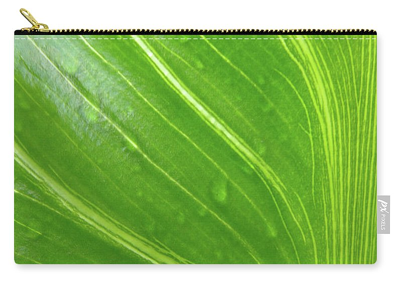 Green Carry-all Pouch featuring the photograph Green Living by Donna Blackhall