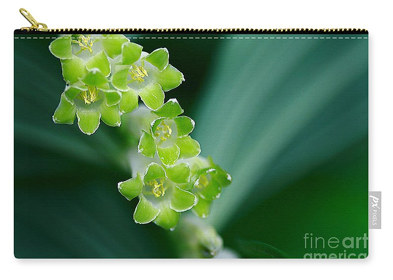 Flowers Carry-all Pouch featuring the photograph Green On Green by Deborah Benoit