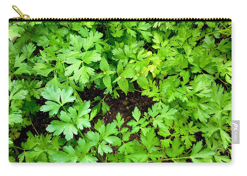 Parsley Carry-all Pouch featuring the painting Green Parsley 2 by Jeelan Clark