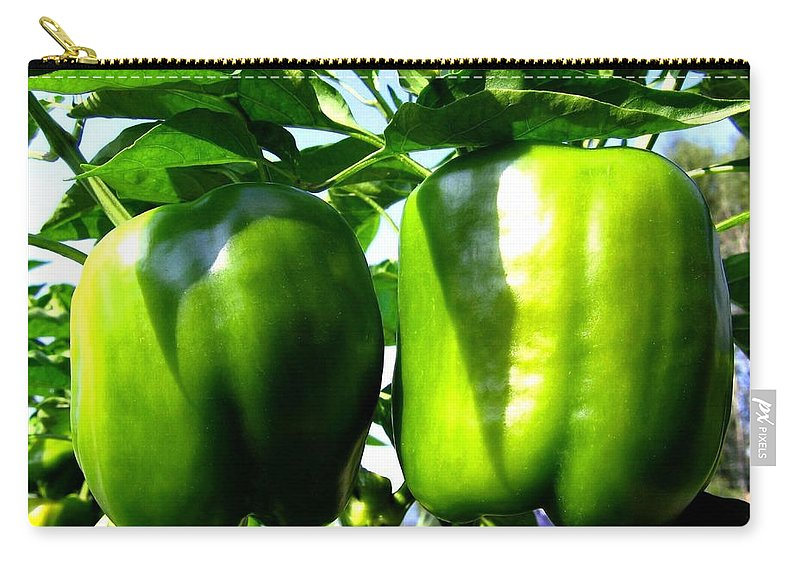 Green Peppers Carry-all Pouch featuring the photograph Green Peppers by Will Borden