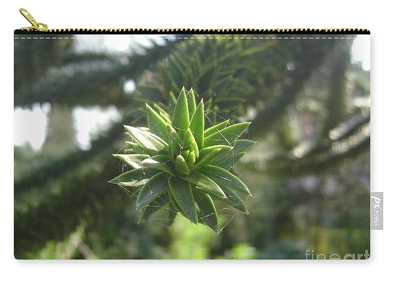 Green Carry-all Pouch featuring the photograph Green by Steve K