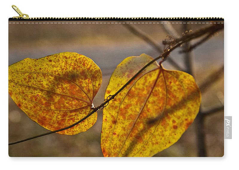 Greenbriar Carry-all Pouch featuring the photograph Greenbrier Glow by Douglas Barnett