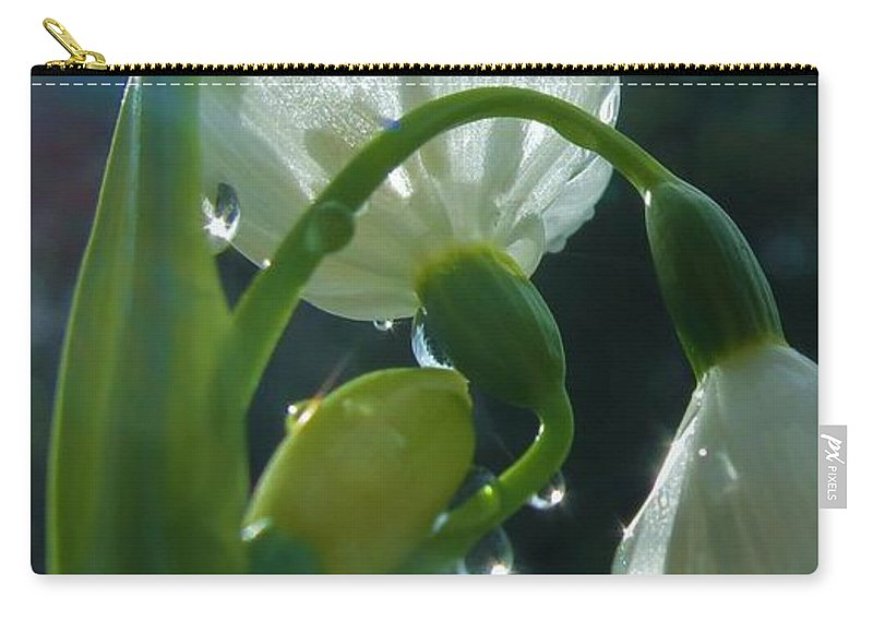 Spring Carry-all Pouch featuring the photograph Greetings by Wendy Rickwalt