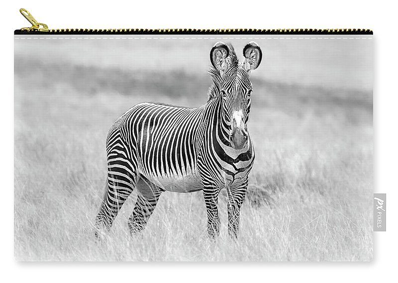Africa Carry-all Pouch featuring the photograph Grevy Zebra 5953bw by Karen Celella