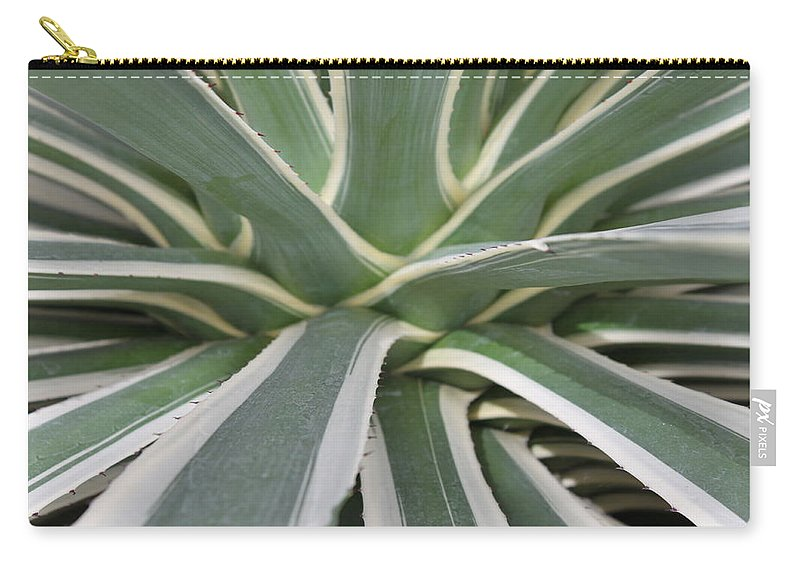 Nature Carry-all Pouch featuring the photograph Growth by Munir Alawi