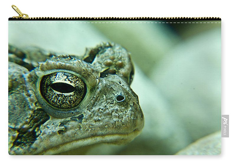 Toad Carry-all Pouch featuring the photograph Grumpy Toad by Douglas Barnett