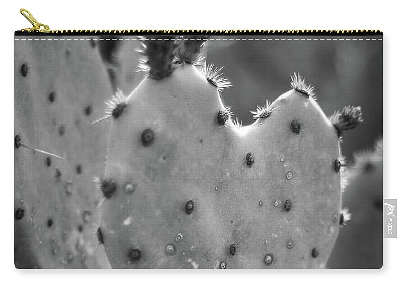 Cactus Carry-all Pouch featuring the photograph Guarded Heart by Martina Schneeberg-Chrisien