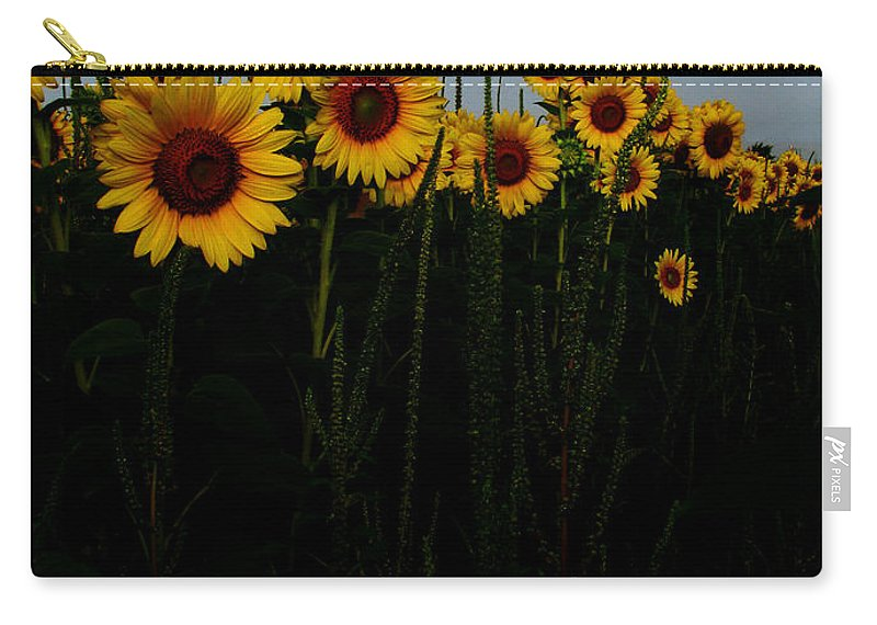 Sunflowers Carry-all Pouch featuring the photograph Guide Me by Amanda Barcon