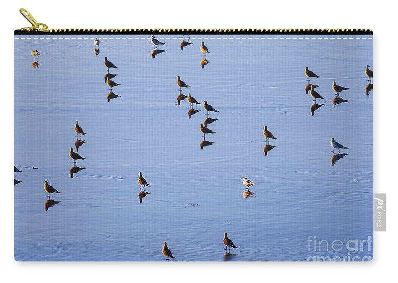 Graphic Image Carry-all Pouch featuring the photograph Gulls And Reflections Dot The Water by Sharon Foelz