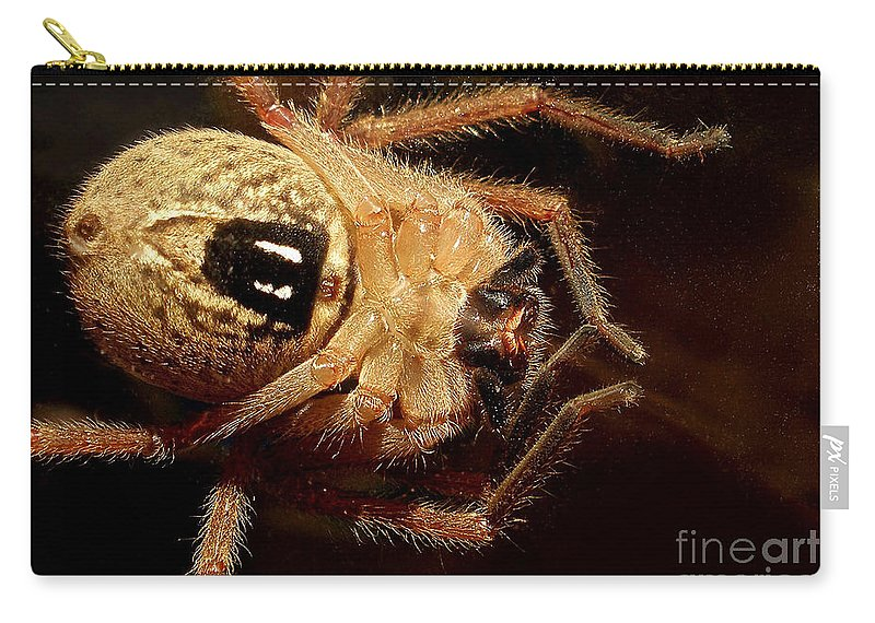 Photography Carry-all Pouch featuring the photograph Hairy Spider by Kaye Menner