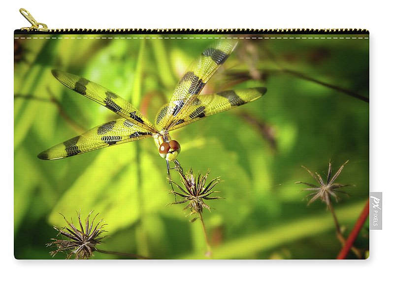 Dragonfly Carry-all Pouch featuring the photograph Halloween Pennant Dragonfly by Mark Andrew Thomas