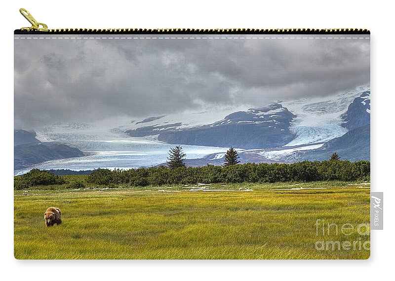 Hallo Glacier Carry-all Pouch featuring the photograph Hallo Glacier And A Bear by James Anderson