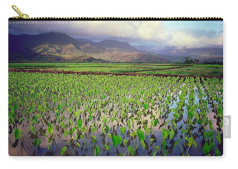 Kauai Carry-all Pouch featuring the photograph Hanalei Valley Taro Ponds by Kevin Smith