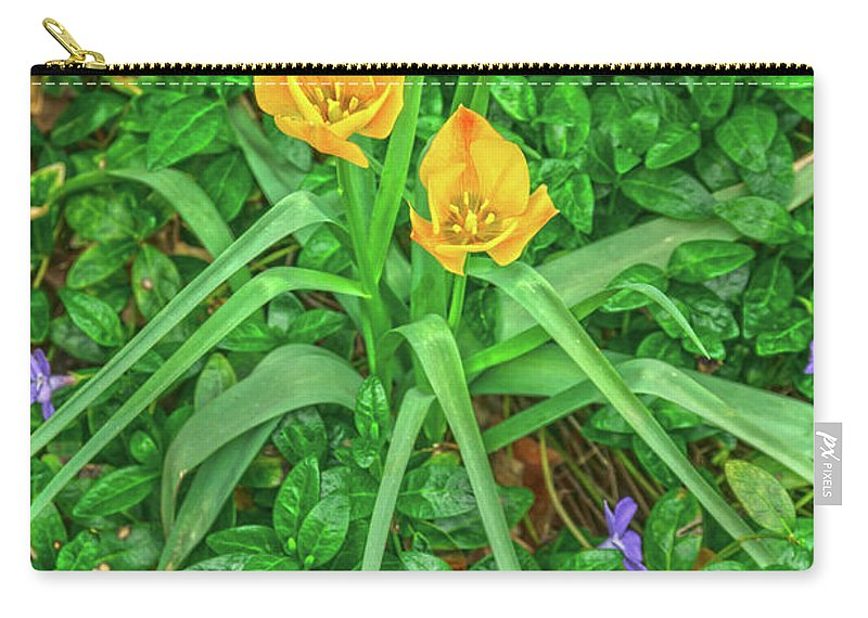 Yellow Flowers Carry-all Pouch featuring the photograph Handsome Threesome by Bijan Pirnia