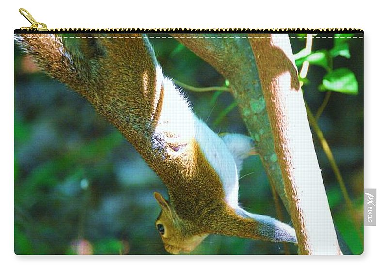 Wildlife Carry-all Pouch featuring the photograph Hanging Around by Eric Liller