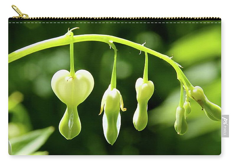 Blossom Carry-all Pouch featuring the photograph Hanging Around by Laddie Halupa
