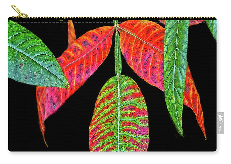 Leaves Carry-all Pouch featuring the photograph Hanging Green And Red Leafs... by Tom Hageman