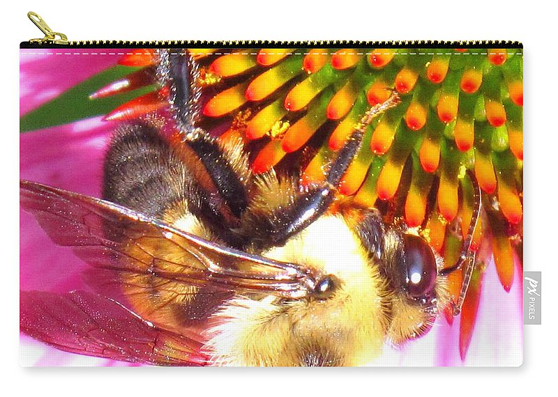 Bee Carry-all Pouch featuring the photograph Hanging In There by Ian MacDonald