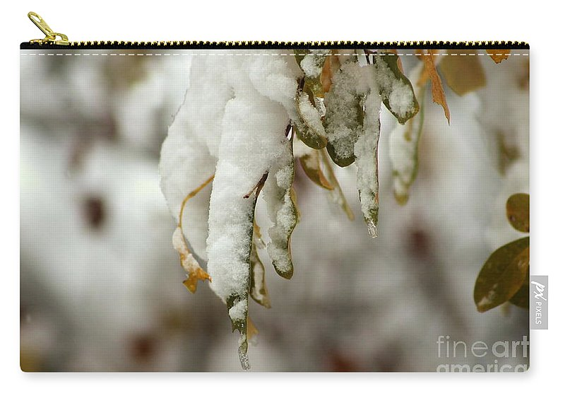 Winter Carry-all Pouch featuring the photograph Hanging Snow by Leone Lund
