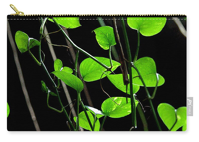 Plants Carry-all Pouch featuring the photograph Hanging Vines by Joe Kozlowski