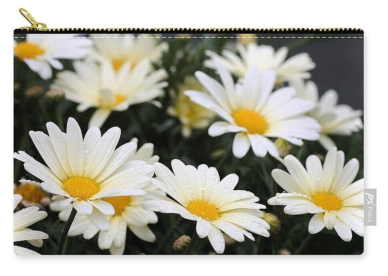 Daisy Carry-all Pouch featuring the photograph Happy After Rain Shower by Angela Rath