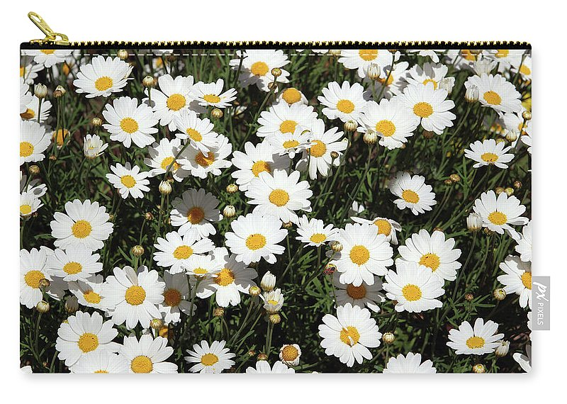 Daisy Carry-all Pouch featuring the mixed media Happy Daisies- Photography by Linda Woods by Linda Woods