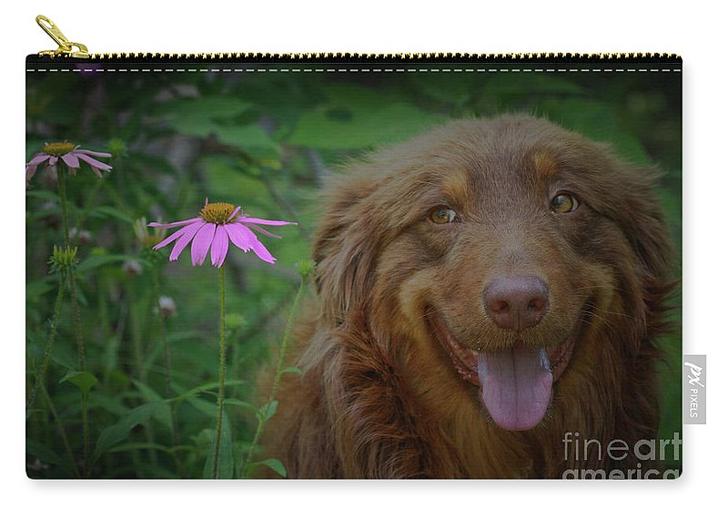 Animals Carry-all Pouch featuring the photograph Happy Dog Days by Kim Henderson