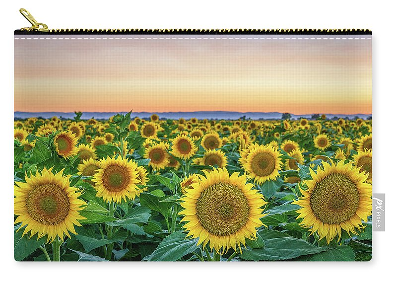 California Carry-all Pouch featuring the photograph Happy Faces by Greg Mitchell Photography