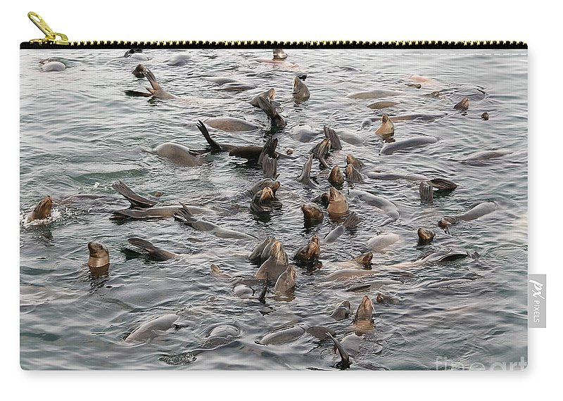 Carry-all Pouch featuring the photograph Happy Harbour Seals by Carol Groenen