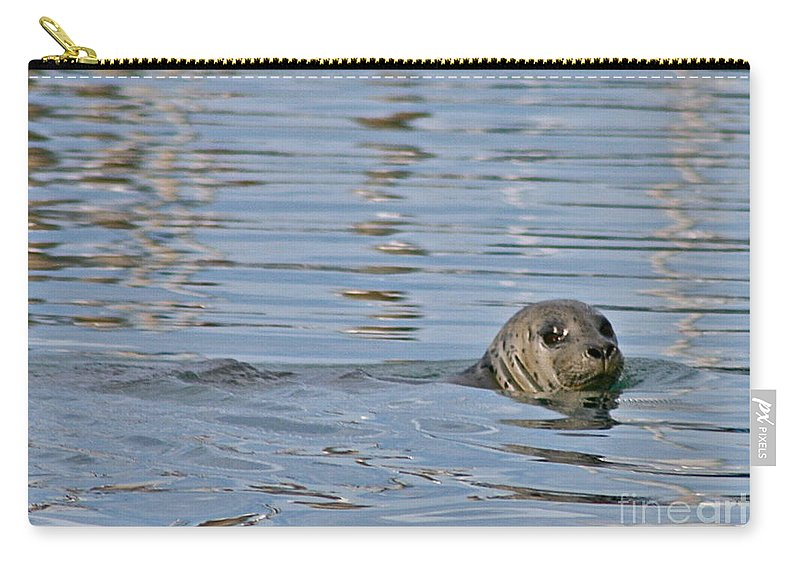 Seal Carry-all Pouch featuring the photograph Harbor Patrol by Rick Monyahan