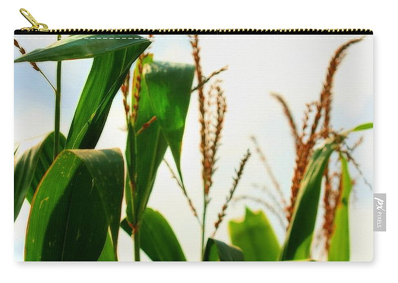 Farm Carry-all Pouch featuring the photograph Harvest Corn Stalks by Angela Rath