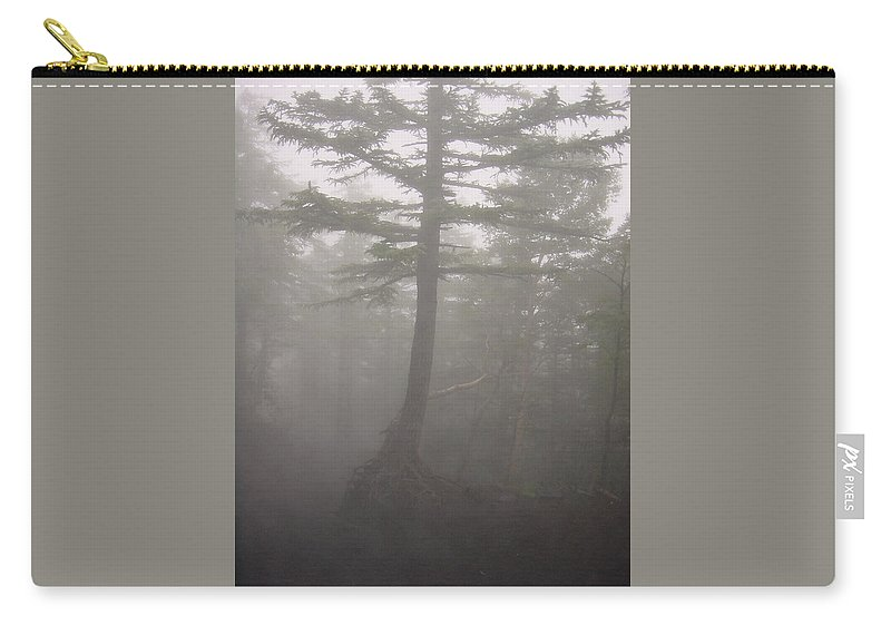 Forrest Carry-all Pouch featuring the photograph Haunted Forest by D Turner