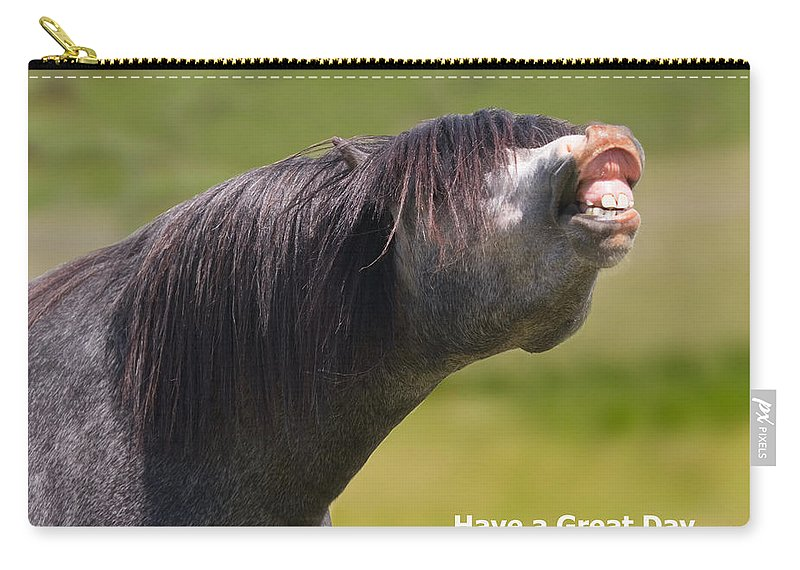 Horse Carry-all Pouch featuring the photograph Have A Great Day by Karen Ulvestad