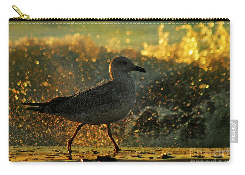 Seagull Carry-all Pouch featuring the photograph Have A Walk By Th Sea by Angel Ciesniarska