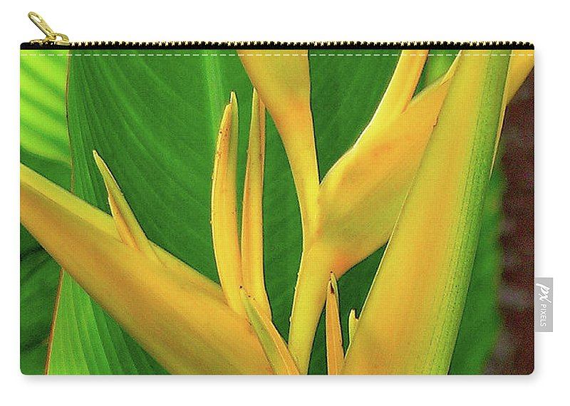 Hawaii Flowers Carry-all Pouch featuring the photograph Hawaii Golden Torch by James Temple