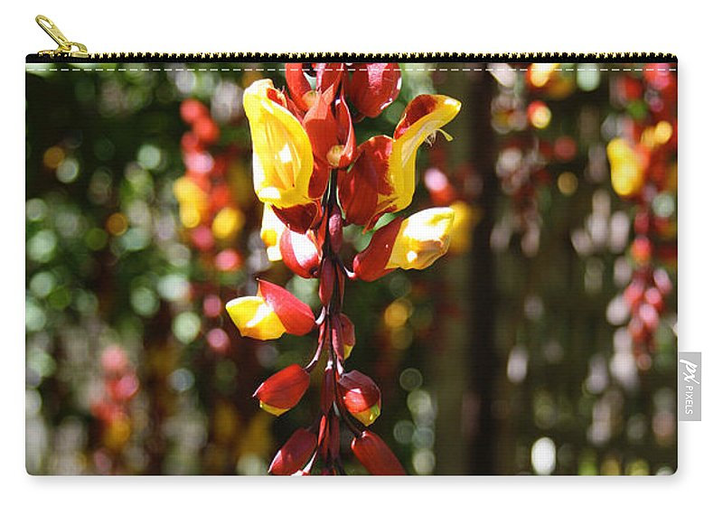 Hawaii Hawaiian Plant Red Green Yellow Hanging Pepper Na 'aina Kai Botanical Gardens Kauai Bloomrosen Carry-all Pouch featuring the photograph Thunbergia Mysorensis by J Bloomrosen