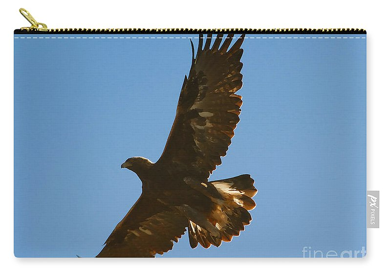 Hawk Carry-all Pouch featuring the photograph Hawk In Flight by David Lee Thompson