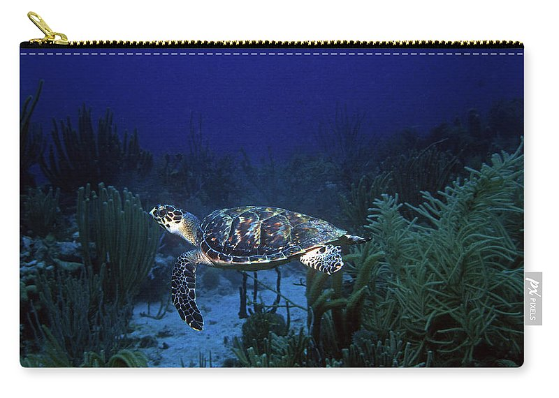 Hawksbill Sea Turtle Carry-all Pouch featuring the photograph Hawksbill Sea Turtle 1 by Pauline Walsh Jacobson