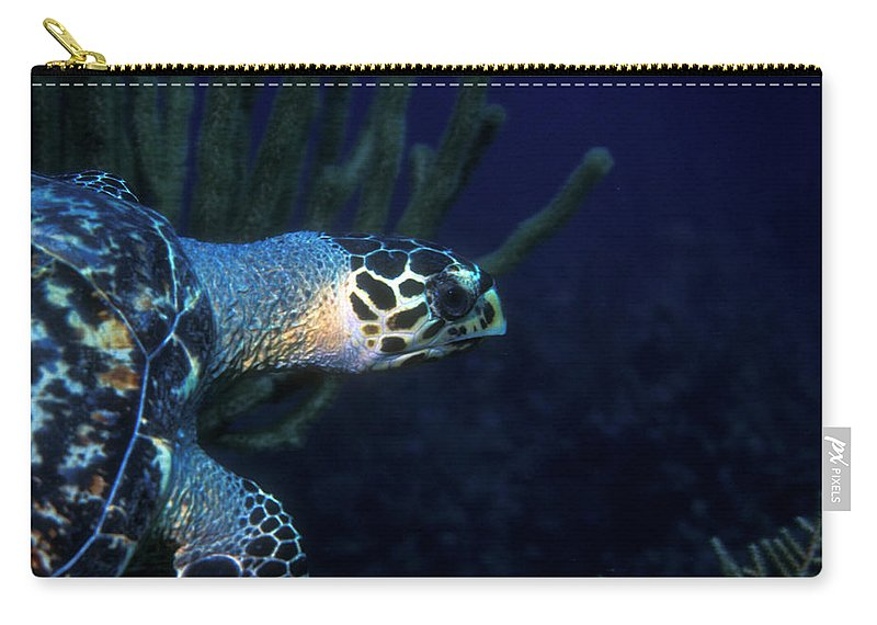 Hawksbill Sea Turtle Carry-all Pouch featuring the photograph Hawksbill Sea Turtle 2 by Pauline Walsh Jacobson