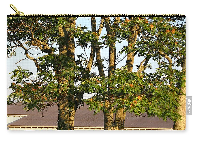 Landscape Carry-all Pouch featuring the photograph Hay Bales And Trees by Todd A Blanchard