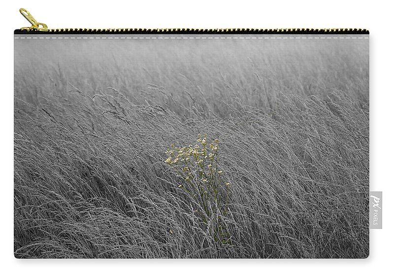 Fog Carry-all Pouch featuring the photograph Hay Daisy In The Fog by Eric Liller