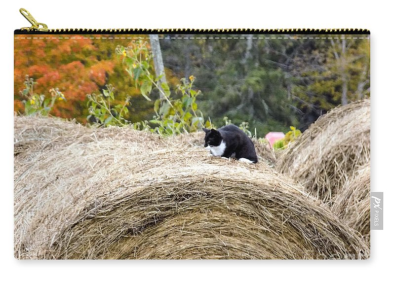 Cat Carry-all Pouch featuring the photograph Hay Kitty by William Tasker