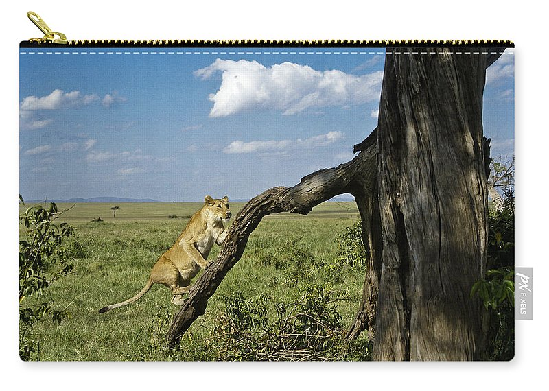 Africa Carry-all Pouch featuring the photograph Heading For A High Spot by Michele Burgess
