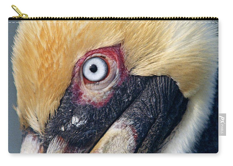 Brown Pelican Carry-all Pouch featuring the photograph Headshot Brown Pelican by John Harmon