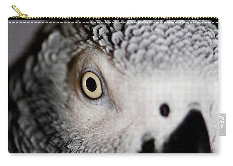 African Gray Parrot Carry-all Pouch featuring the photograph Heeere's Bogie by Betty LaRue