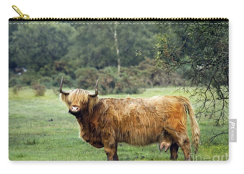 Heilan Coo Carry-all Pouch featuring the photograph Heilan Coo by Angel Ciesniarska