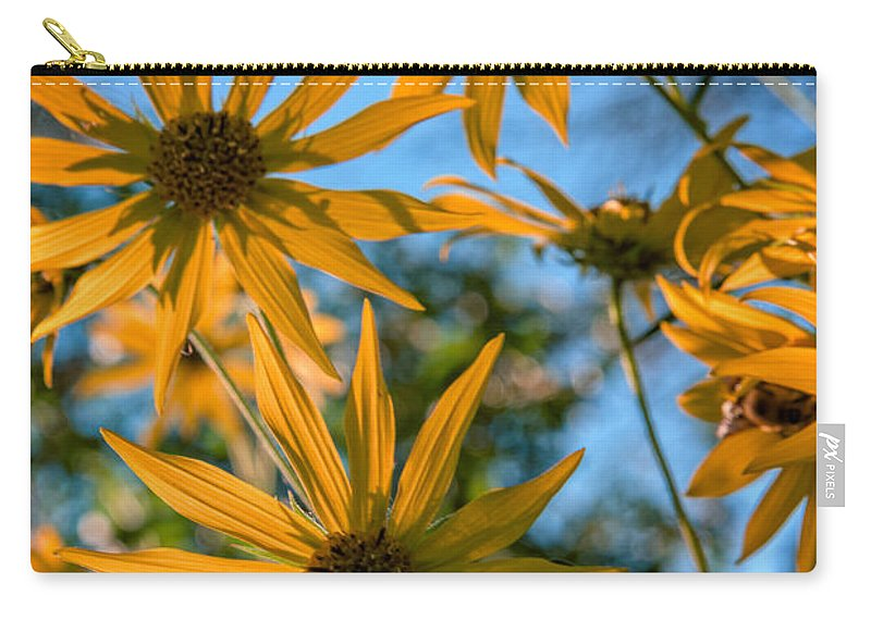 Rick Berk Carry-all Pouch featuring the photograph Helianthus Giganteus by Rick Berk