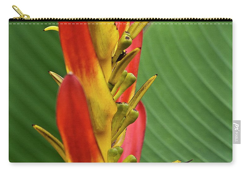 Heliconia Carry-all Pouch featuring the photograph Heliconia by Heiko Koehrer-Wagner