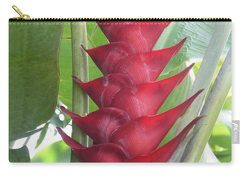Heliconia Carry-all Pouch featuring the photograph Heliconia Hot Flash by Mary Deal