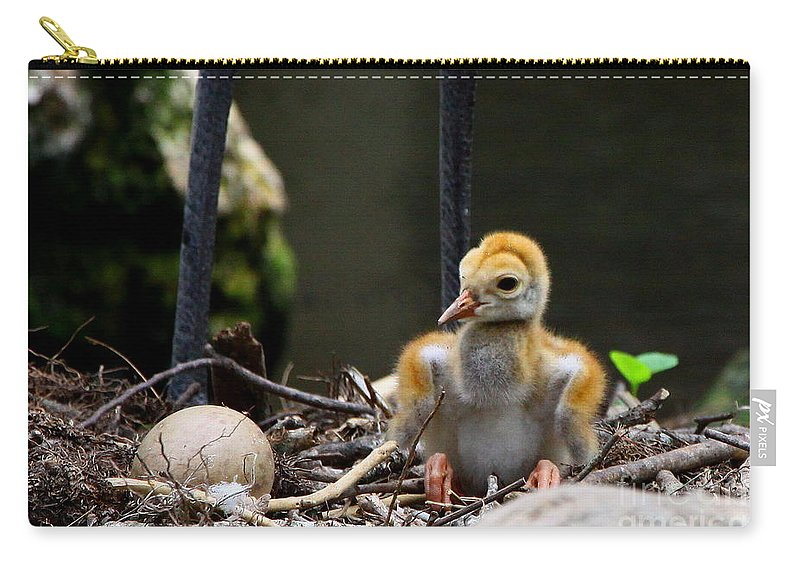 Sandhill Crane Carry-all Pouch featuring the digital art Hello World by Barbara Bowen